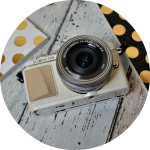 Olympus Pen E-PL7 // The Bloggers Camera